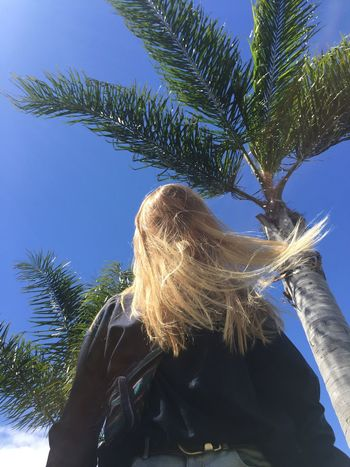 Tree Plant Hair Sky Palm Tree Tropical Climate Nature One Person Growth Low Angle View Hairstyle Long Hair Day Women Adult Blond Hair Palm Leaf Lifestyles Abstract Photography Abstract Fashion