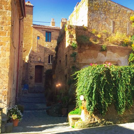Stone Stonework Architecture Architecture_collection Architectural Detail Italy Ancient Town Ancient Building Ancient City Ancient Architecture Ancient Civilization Italia Italy❤️ Italy🇮🇹 Ivy Ivy Leaves Ancient Civitadibagnoregio Civita Di Bagnoregio Civitabagnoregio Civita