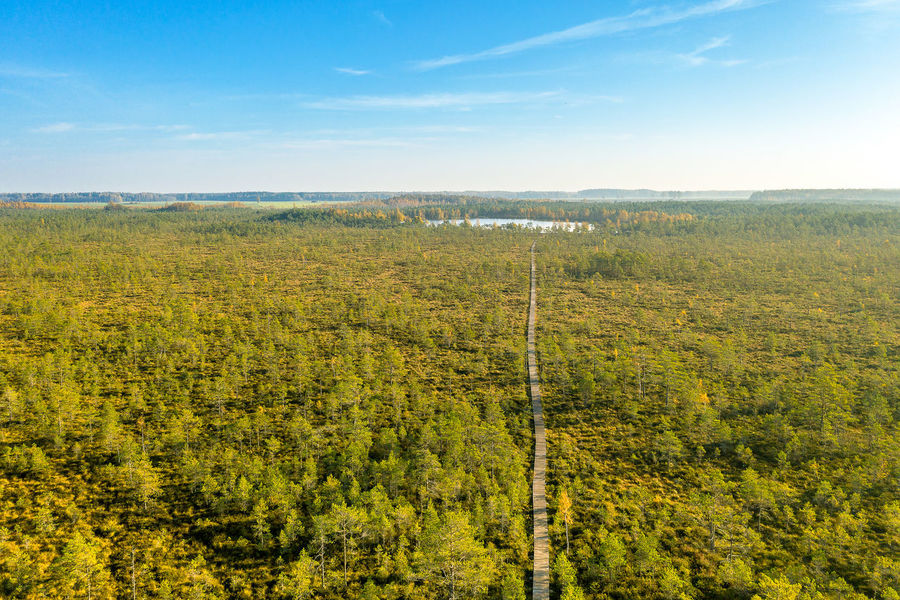Lithuanian nature Lithuania Nature Lithuania Travel Lithuanian Nature Nature Park Drone  Aerial View Mavic 2 Mavic 2 Pro Europe Aerial DJI X Eyeem Walking Trail Trail Landscape Environment Sky Land Scenics - Nature Plant No People Day Tranquil Scene Beauty In Nature Non-urban Scene Outdoors Horizon Over Land Tree Horizon Tranquility Forest Field Rural Scene WoodLand Rolling Landscape
