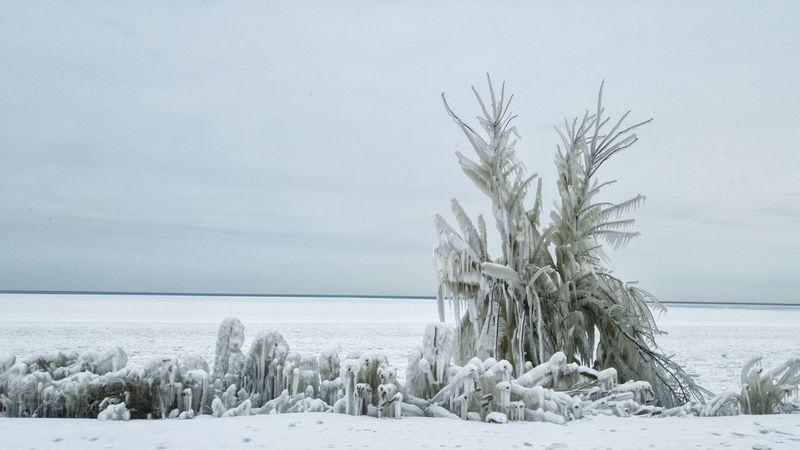 Blackandwhite Photography Monochrome EyeEm Best Shots - Black + White Winter Icewatch Lake Erie Cold Days