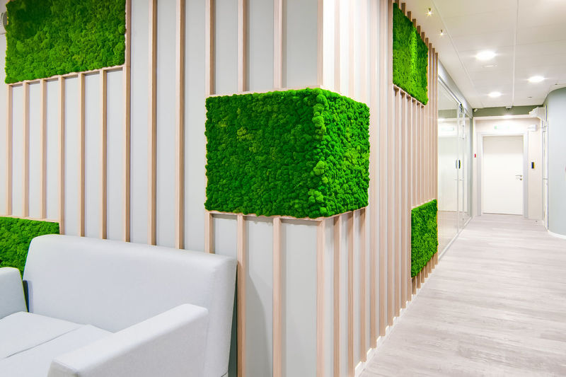 Architecture Building Built Structure Clean Day Elégance Flooring Grass Green Color Growth Hedge Indoors  Modern Nature No People Plant Tree Wall - Building Feature White Color