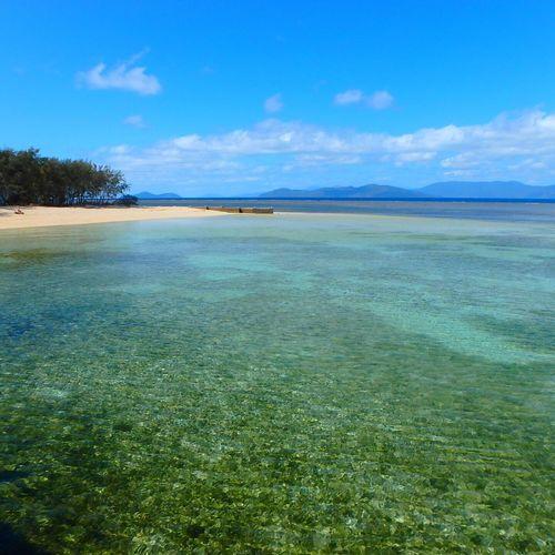 Trip Australia Greatbarrierreef Greenisland Love ♥