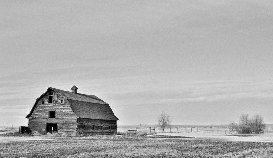 Abandoned Alberta Architecture Barn Barn Blackandwhite Canada Farm Farmland Farmlife Field Homestead Landscape Lonely Monochrome Outdoors Peaceful Pioneer Prairie Rural Sky