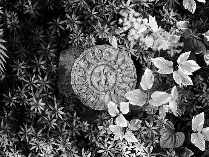 """Sun & Moon"" Sun Moon Contrast Contrasty Nikon F3 Film Photography Film Ilford HP5 Plus Pushed Film +2 35mm Film TakeoverContrast"