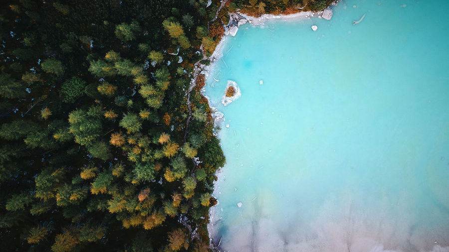 Lago di Sorapis, Italy Water Sea Underwater UnderSea Nature Swimming Day High Angle View Plant Beauty In Nature Tree Sea Life Animal Animal Themes Animals In The Wild No People Outdoors Sport Aerial View Aerial Dji Dji Spark Lago Di Sorapis Italy Dolomites
