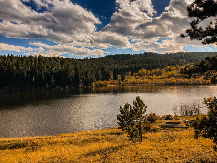 Lake in Autumn in the Rocky Mountains at Camp Tahosa Boy Scouts Of America Camp Tahosa Colorado EyeEmNewHere Beauty In Nature Cloud - Sky Day Forest Growth Lake Landscape Mountain Nature No People Outdoors Scenery Scenics Scouts Sky Tranquil Scene Tranquility Tree Water