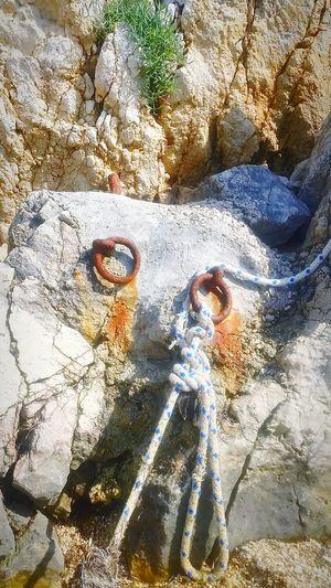 Photo Pag Nature Photography Seaside Adriatic Croatia Humanimpact TheOOMission The OO Mission