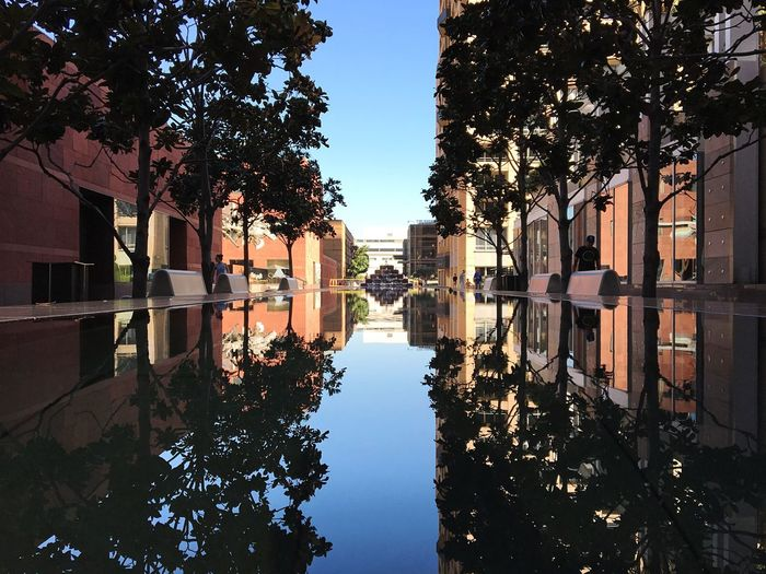 Trees and buildings reflecting in artificial pond against clear sky