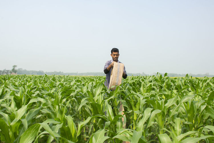 Indian farmer holding water pipe at corn field