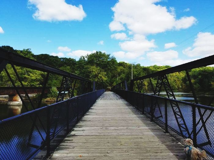 Walking the dog at New Richmond Dog Pure Michigan New Richmond Water Michigan City Kalamazoo River Beautiful WOW Tree Bridge - Man Made Structure Footbridge Sky Cloud - Sky Boardwalk Scenics Horizon Over Water Tranquil Scene Calm Growing Tranquility Footpath