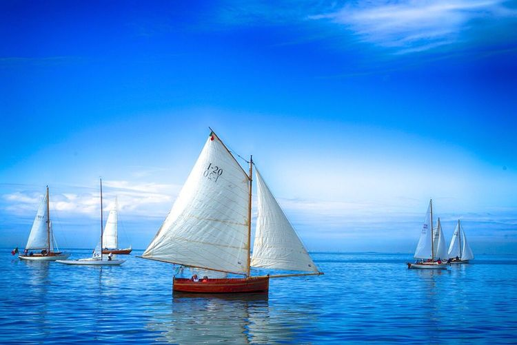 Sailboat Sailing Sea Classic Boats Wood Sea And Sky Trieste Italy Adriatic Sea Gulf Of Triest Barcolana Classic On The Way
