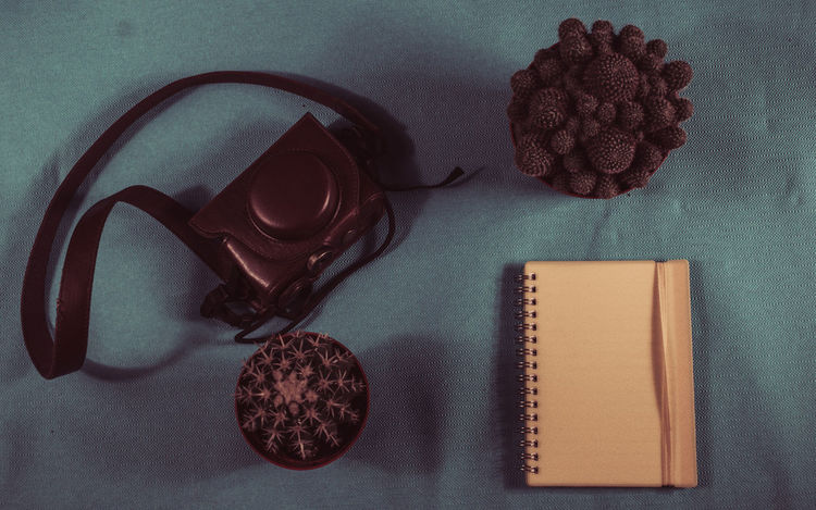 High Angle View Directly Above Diary Close-up Full Frame Desk Plants Ready To Go Camera - Photographic Equipment Tourism Equipment Journalist Green Background Vintage Style Leather Bag Text Space Taste Of Travel Work Camera Bag Notepaper Desk From Above Plant Notebook Papernote Paperbook