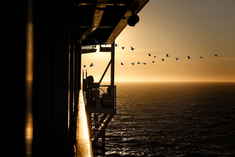 Silhouette birds flying over sea during sunset