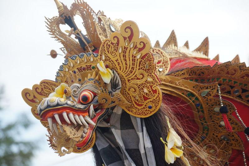 Close Up Of Dragon Costume