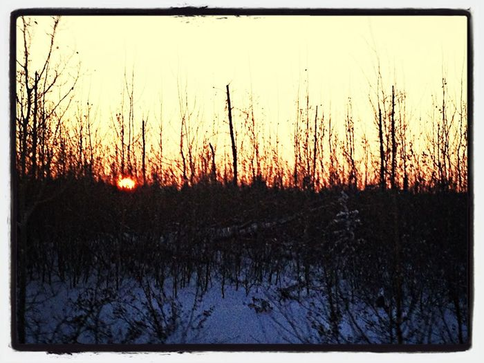 Way up in Northern Saskatchewan for the holidays. It's sure is beautiful. Taking a lot of photos but barely getting any time on here. There is no cell service way up here lol. This was yesterday about 5pm and the sun was already almost gone. -43•C,very cold,I think I like this shot! Lol Winter Sunset Trees Cold Days