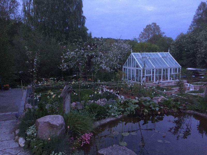 Garden Enjoying Life åtvidaberg Björsäter Garden Photography Springtime Relaxing Taking Photos Trädgårdsbilder Trädgården