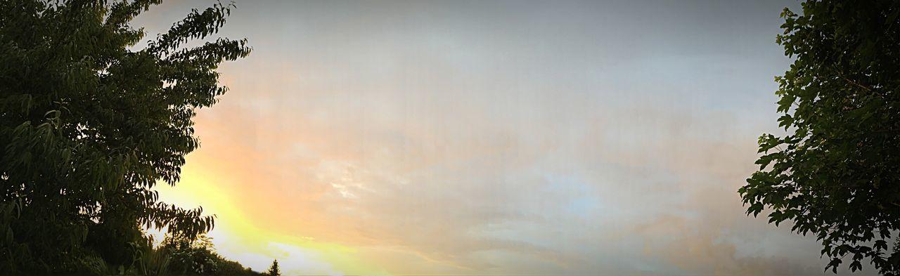 Par le Soleil☀️, le Phénix🔥renaît chaque matin 🌜🌞 Paysage Ciel Et Nuages Clouds And Sky CIELFIE Sun Soleil Panorama Panoramique