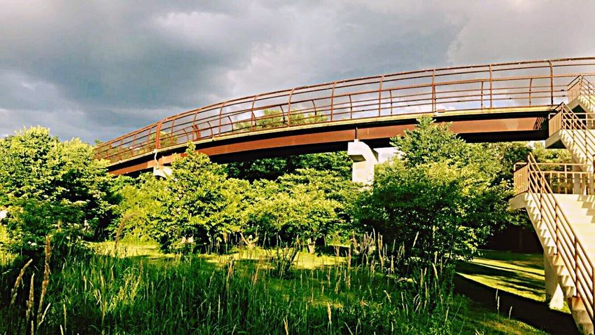 Visited this spot for the last time in awhile. [the bridge] Architecture Eye4photography  Bridge Nature Nature Photography EyeEm Best Shots EyeEmNewHere EyeEm Gallery EyeEm Personal Summer