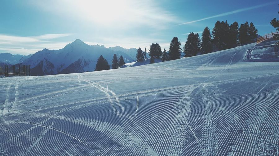 Alpes Mayrhofen Apline Skiing Austria Tirol  Piste Skiing Snow Snowboarding Snowing Tree Snow Cold Temperature Mountain Winter Forest Pinaceae Sky Landscape Snowcapped Mountain Mountain Range