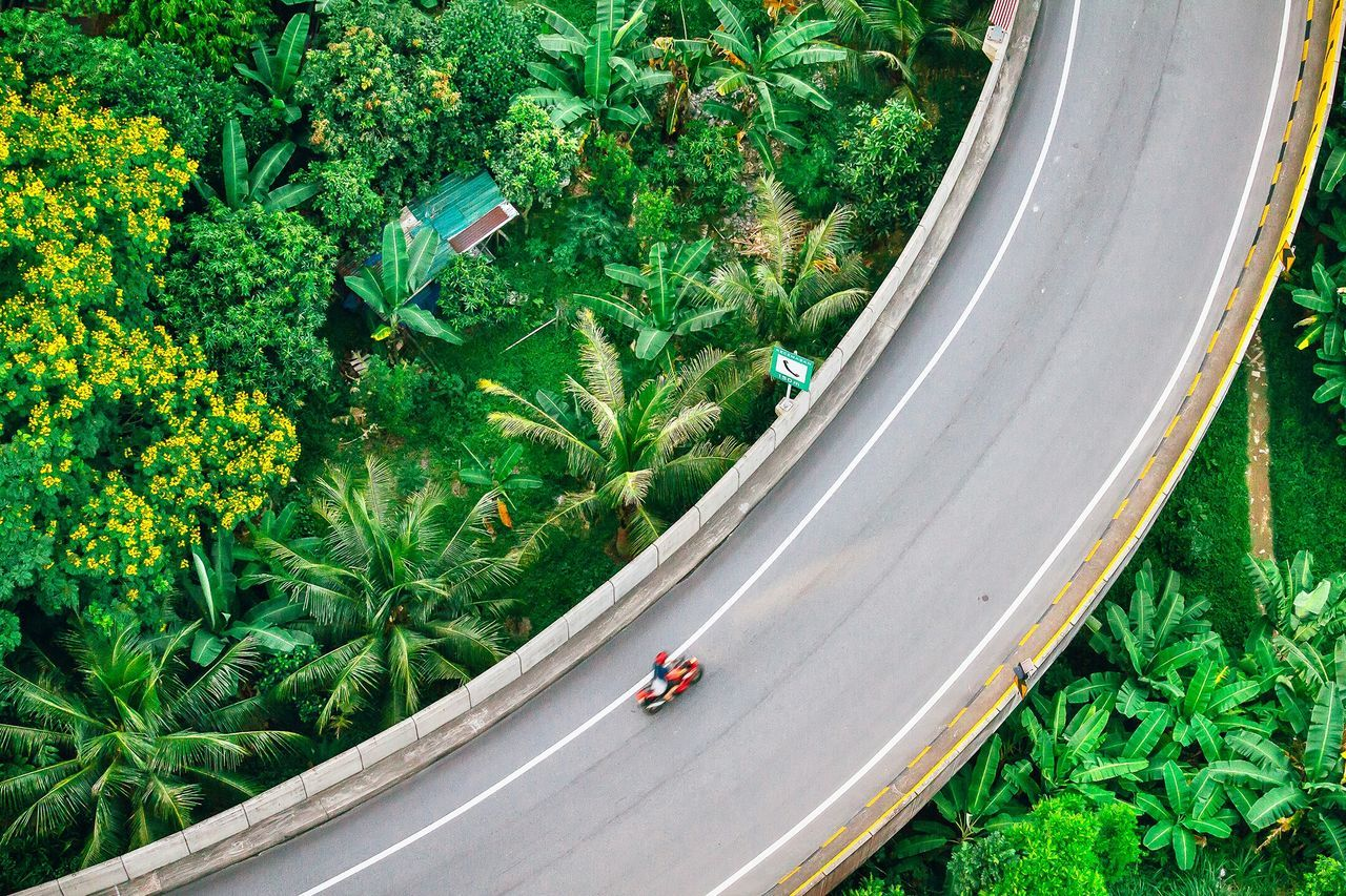 High angle view of bridge amidst trees