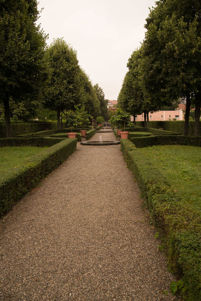 Hesperidengärten Nürnberg Baroque Beauty In Nature Day Diminishing Perspective Empty Empty Road Footpath Garden Grass Green Color Growth Landscape Long No People Outdoors Rainy Road Scenics Sky Taxus The Way Forward Tranquil Scene Tranquility Tree Vanishing Point
