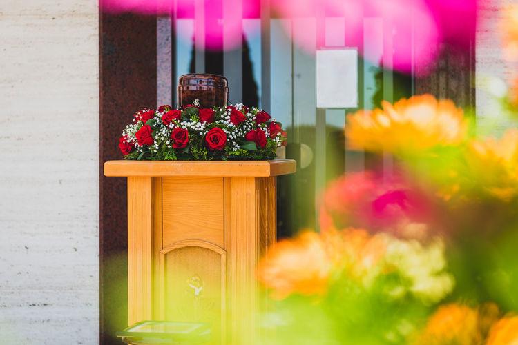 Close-up of flower pot against plants