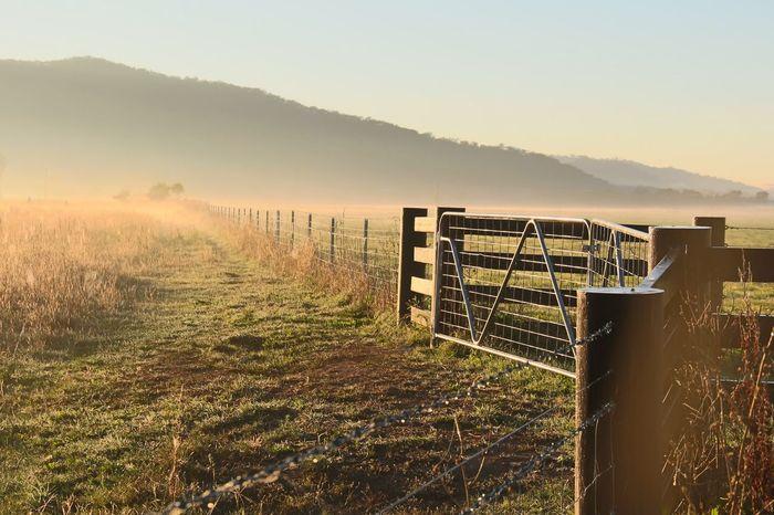 Foggy sunrise Landscape Field Scenics Nature Tranquility No People Tranquil Scene