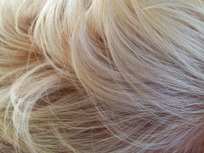 closeup dog Animal Brown Dog Browndog Close Up Close-up Closeup Day Dog Dog Fur Dog Hair Dog Love Dogfur Doglover Dogs Dogslife Dog❤ Hairs No People Outdoors