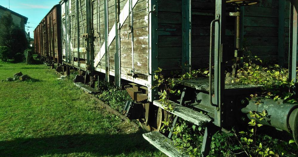 Abandoned Chemin De Fer Damaged Deterioration Garden Herbe Lierre Locomotive Old Puisaye Toucy Train Transpoyaudin Vert Wagon  Wood Wood - Material