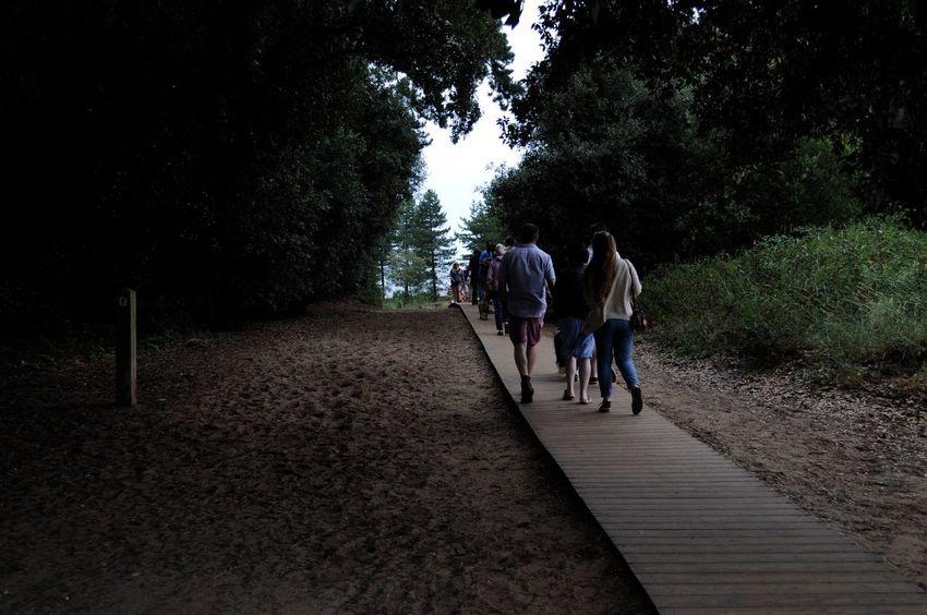 Melancholic Landscapes Melancholy Beach Footpath Walking Neutral Casual