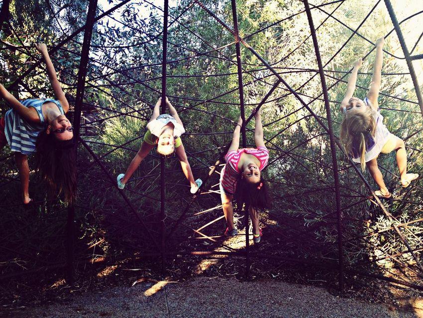 My little monkeys.