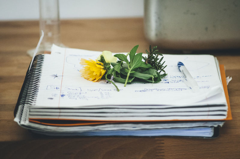 Class Close-up Day Flower Freshness Indoors  No People Notes Table
