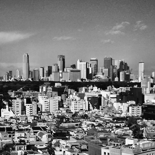 City Tokyo Scene Landscape Buildings Photo YouMustSee Tokyo 東京 景観 風景 ビル 建物 遠景 新宿 高層ビル 白黒写真 Streetphotography