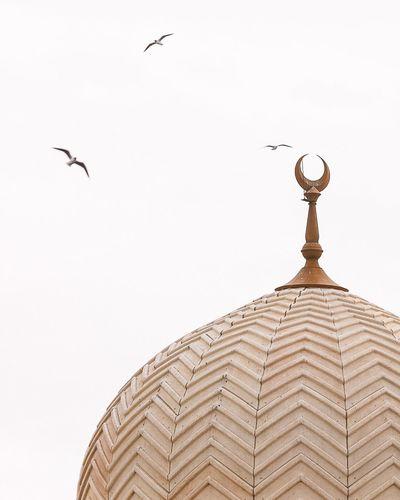 c a l m n e s s // Mosque Architecture Bird Dubai Masjid Peace Minaret The Architect - 2017 EyeEm Awards