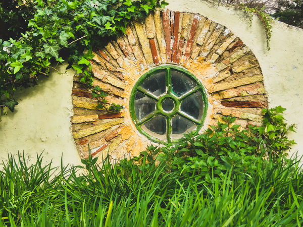 Vintage window !!Plant Green Color Outdoors Built Structure Architecture Tree Day Growth No People Sunlight Nature Grass Environmental Conservation Green Nature Architecture Facade Circular Window Window Pattern Texture Textured  Nature_collection Beauty In Nature EyeEm Nature Lover EyeEm Best Shots Nature