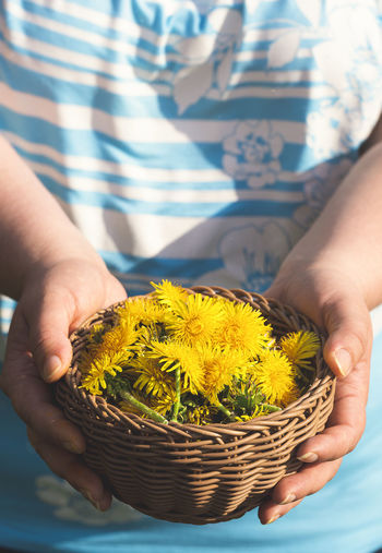Close-up of hand holding yellow flower in basket