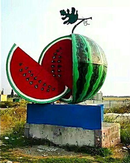 Нововоронцовка Арбузик🍉 Арбуз Popular Photos Eyeem Photography EyeEm Gallery херсон украина Watermelon 👸👑💄💎💋