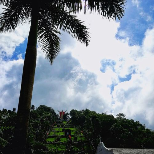 Eyeem Philippines Kamay Ni Hesus, Lucban, Quezon Tree Cloud - Sky Sky Nature Growth Day Outdoors Beauty In Nature