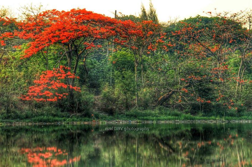 Landscape Landscape #Nature #photography