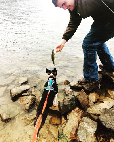 My loves 😍 IPhoneography Outdoors Fishing Boston Terrier Life Real People Water Beauty In Nature