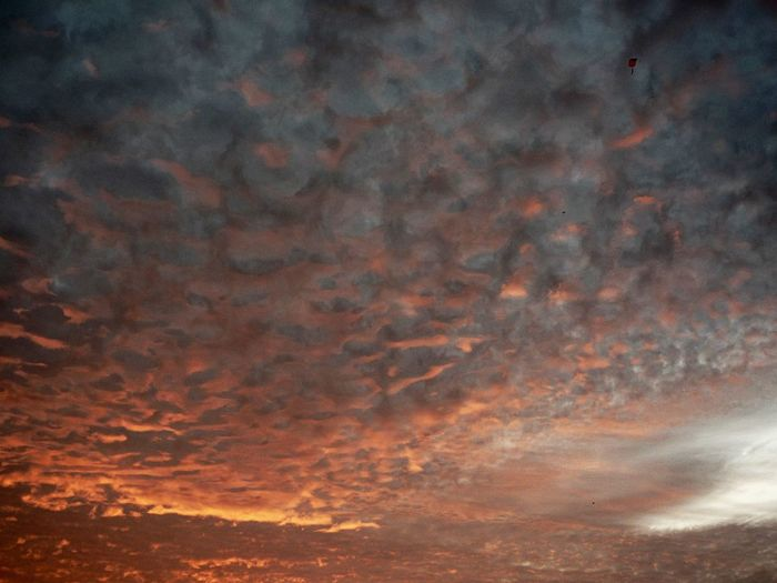 Orange Color Cloud - Sky Beauty In Nature Sky Sunset Tranquility No People Nature Scenics - Nature Tranquil Scene Backgrounds Outdoors Idyllic Full Frame Dramatic Sky Low Angle View Sunlight Majestic Cloudscape