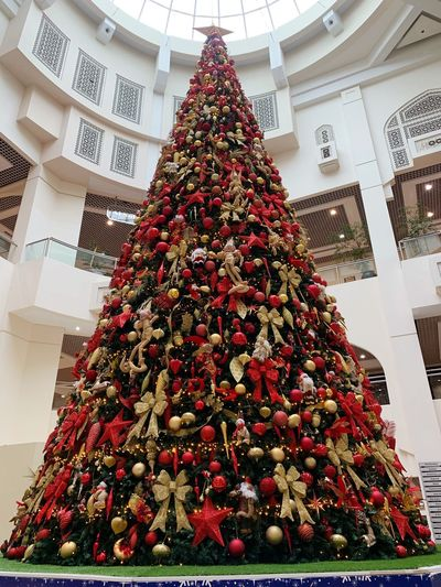 christmas tree Christmas Tree Celebration Decoration Holiday Christmas Ornament