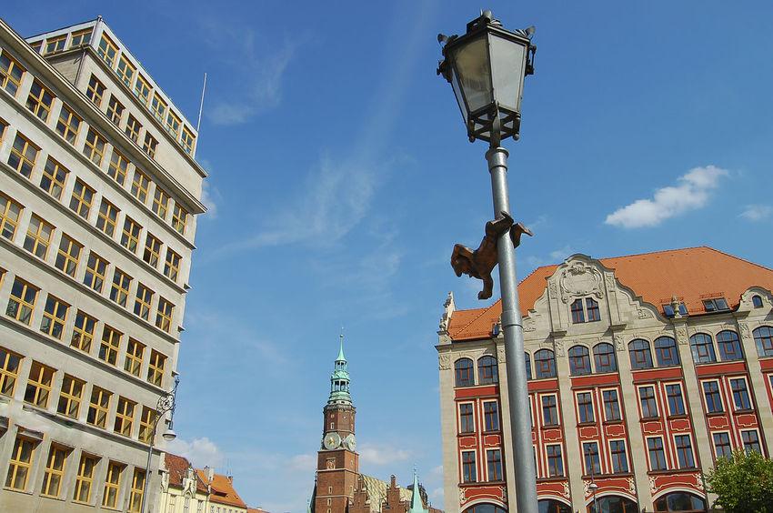 Dwarf Statuette Dwarf Poland Statue Krasnal Main Square Wroclaw