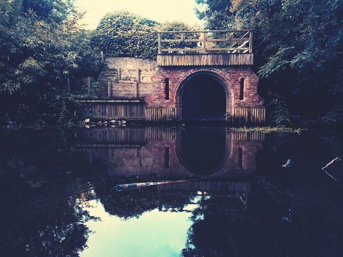 Walking Around Water Reflections Eye4photography  EyeEm Nature Lover