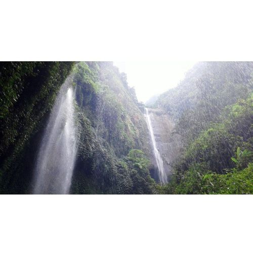 Air terjun Madakaripura - Probolinggo Exploreindonesia Journey Lifeofexplore Loveindonesianature Loveindonesia Waterfall Journey Backpacker Traveling Traveler Neverstopexploring  Nature Jomblopetualang