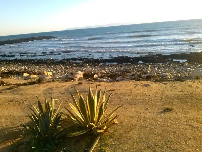San Pedro Water