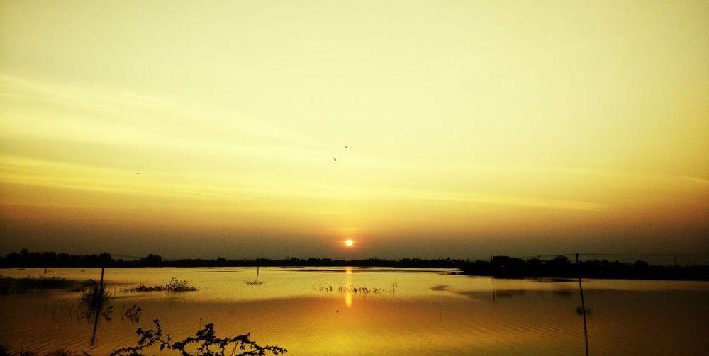 Sunset Sun And
