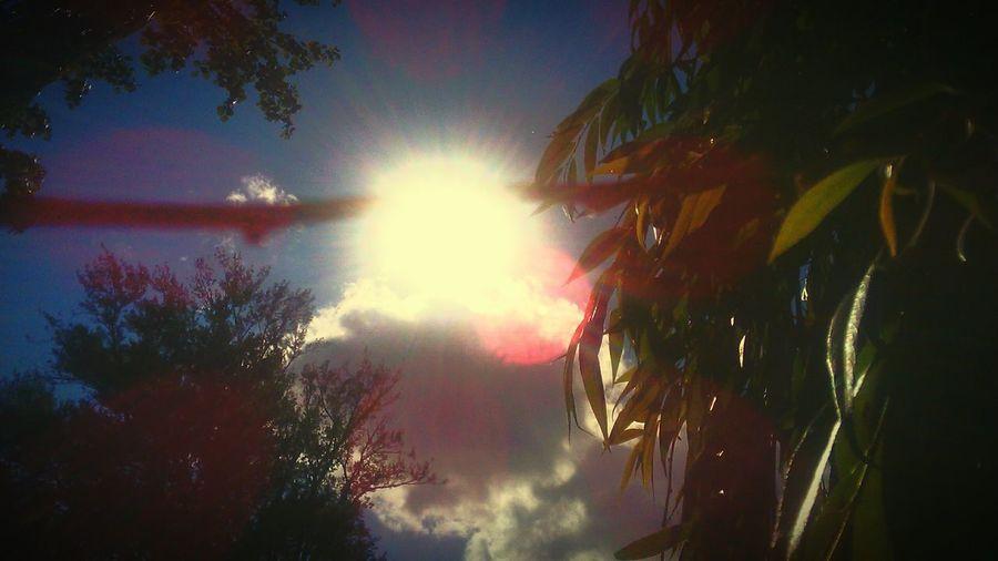 Enjoying Life Sun_collection Spring Relaxing Soleil Ciel Et Nuages Belle Journee Nature_collection Hello World Bon Dimanche !!