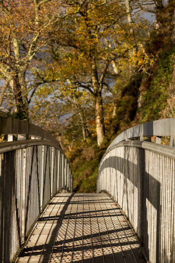 A man made metal bridge along a public footpath around the edge of Loch Loman, Scotland on a sunny autumn day. Architecture Autumn Branch Bridge Built Structure Change Day Direction Focus On Foreground Footbridge Footpath Leaf Nature No People Outdoors Plant Railing The Way Forward Travel Destinations Tree