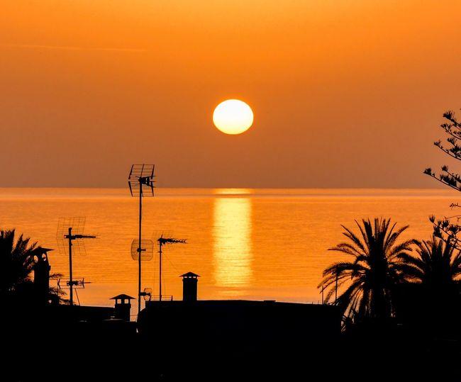 Sunrise Sea Water Sun Sunrise Sky Silhouette Tranquility Horizon Crete Greek Islands Beauty In Nature No People Idyllic Orange Color Tranquil Scene Horizon Over Water Stalis Crete Scenics - Nature Sunset Nature Palm Tree Tropical Climate Outdoors